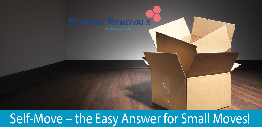 Self-Move – The Answer For Small Moves!